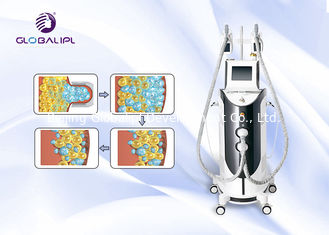 الصين جسم يرسم Cryolipolysis آلة مع يجمّد rf تكهف Lipolaser المزود